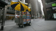 WS T/L Hot dog vendor and his cart in midtown Manhattan / New York City, New York, USA