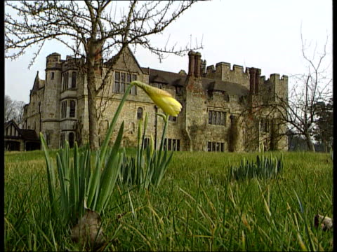 Building on greenbelt land ITN ENGLAND Kent Hever Castle GV Castle and grass surrounding it Castle as daffodil growing in f/g CMS Head of swan LA GV...