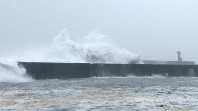 Huge waves spawned by typhoon Halong crash into a harbor on the south coast of Japan on 8th August 2014