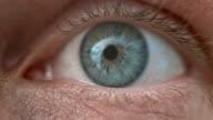 ECU Human blue eye wide open