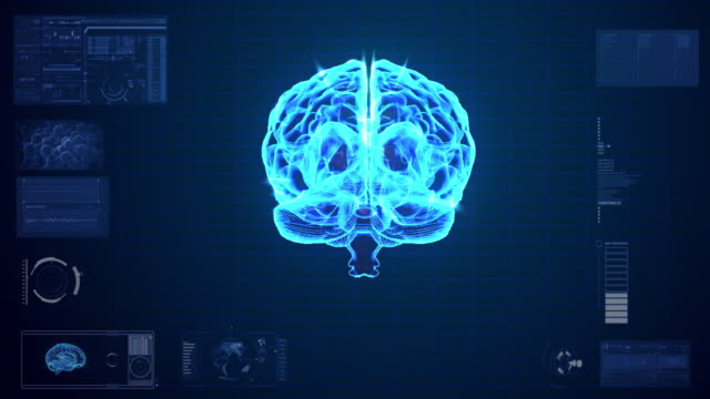 Human Brain neuron Scan animation
