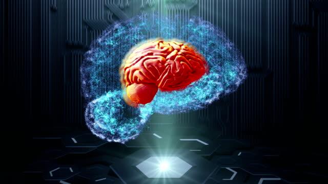 human brain on technology background