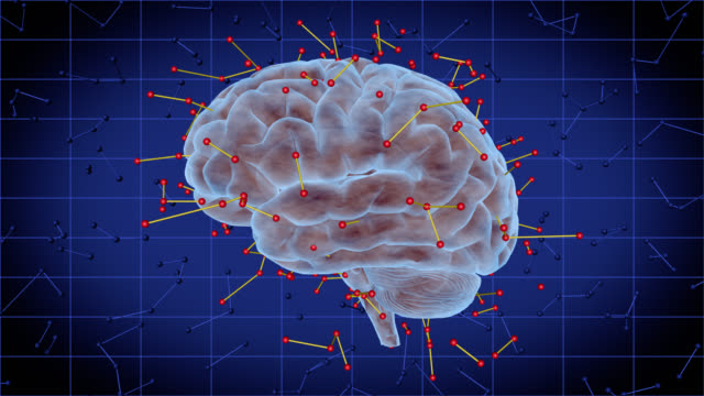 Human brain with futuristic neurotransmitters - Brainstorm 107