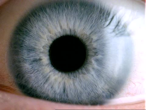 Human eye - CU blue eye, dilated pupil contracts, eyelid closes