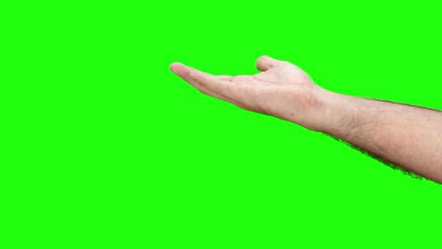 Menschliche hand zeigt