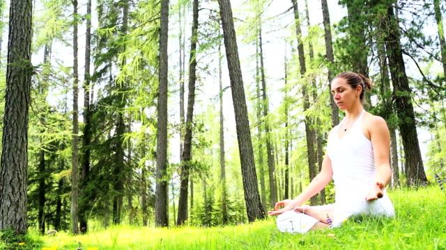 Human Harmony and Balance in Nature