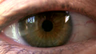 Human hazel eye