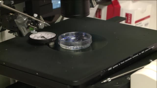 Human oocyte cryopreservation on September 17 2014 in New York City