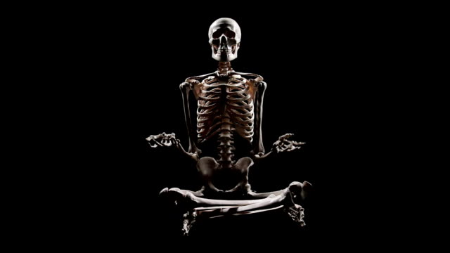 Human Skeleton sitting at lotus pose and pointing with hands