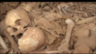 Human skulls and bones lie piled in a cave. Available in HD.