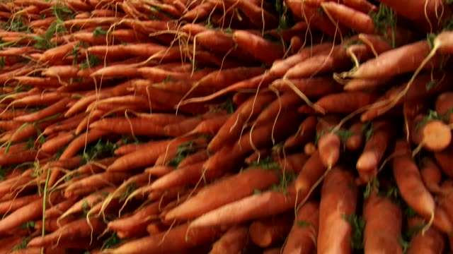 Hundreds of carrots fill a produce bin.