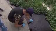KTLA Hundreds of volunteers fanned out across the Los Angeles River in search of dirty water