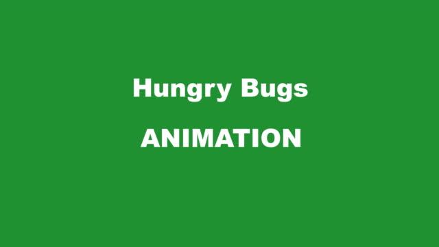Hungry Bug TRANSITION Kit R/L miniMulti coloured