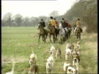 DAY Hunt participants towards on horses as beagles run in front