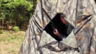 MS Hunter shooting from hunting tent / Madison, Florida, USA