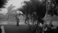 Hurricane Donna hits land / trees bent double by wind and waves Hurricane Donna hits Atlantic Coast on September 02 1960