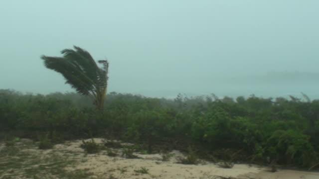 Hurricane force winds