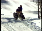 Husky dogs pull people on sleigh down snowy hill
