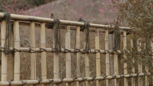Tilt down shot of a bamboo fence racking focus from the plum trees in the background to the fence in the foreground