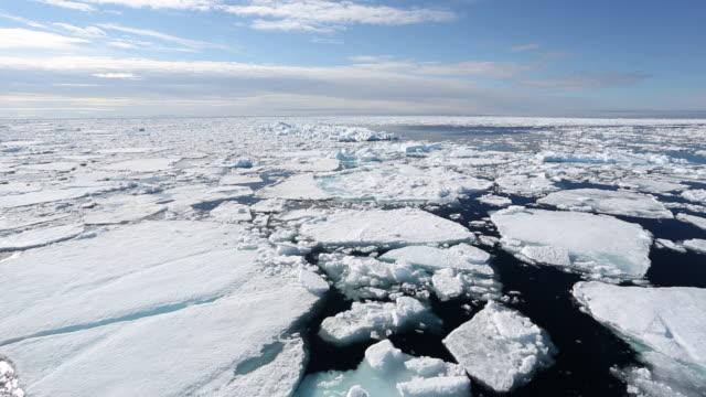 Ice cruising