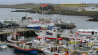 Iceland Djupivogur fishing village marina with colorful fishing boats in port in Eastern Iceland