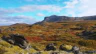 DS Icelandic rolling landscape