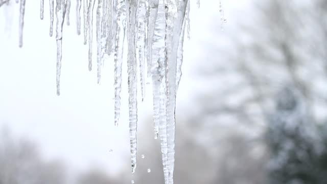 Eiszapfen Schneeschmelze
