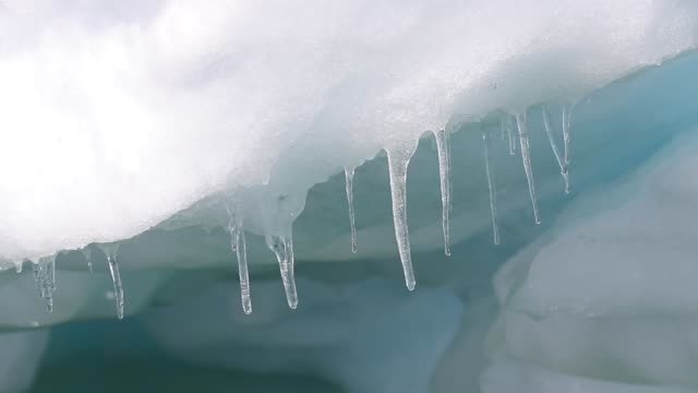 Icicles melting, dripping, attached to icebergs in Antarctica