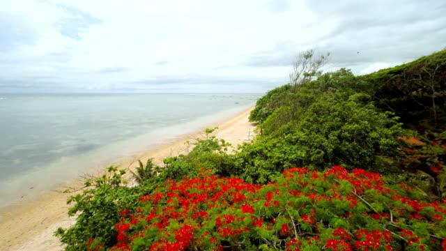 Veduta aerea della spiaggia idilliaca a Bali