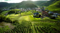 Idyllic Countryside with Vineyards
