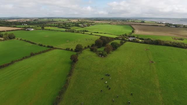 Idyllic fields of County Wexford Ireland
