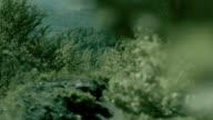 Idyllische Landschaft. Hügel mit Wald bedeckt. Niederlassung im Vordergrund