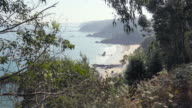 4K | Idyllic landscape of sandy beach and cliffs seen from vantage point. The sea is hidden behind trees and vegetation