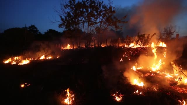 Illegal fires used for clearing land in the Amazon basin on November 21 2014 in Maranhao state Brazil