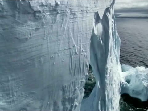 In a spoof Penguins fly around icebergs as they migrate to South America.