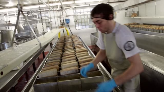 In keeping with tradition Justin Koch places bricks on Brick cheese forms to help press out whey and make blocks of the cheese at the Widmer's Cheese...