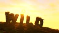 WILD TEXT In landscape HD