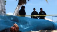 In the once touristic heaven of Acapulco bodies are now piling up in its morgue as authorities struggle to contain the violence in the Mexican...
