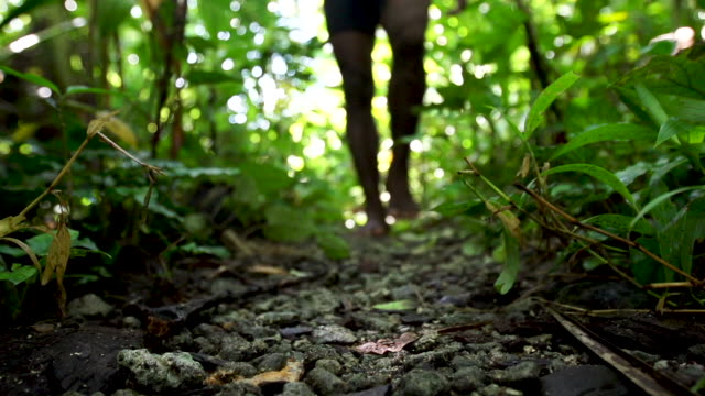 Indigenous man's feet walk through forest into focus, low view, high speed