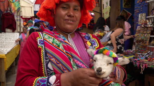 Indigenous Peruvian woman with baby Alpaca in Pisac market, Cusco