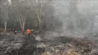 Indonesia Monday declared a state of emergency in Riau province choked with thick haze from forest fires