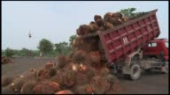 Indonesia palm oil mill on March 20 2013 in Riau Indonesia