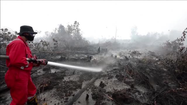 Indonesia Tuesday deployed an extra 1600 military personnel to fight forest and farm fires that have cast a thick haze over the region