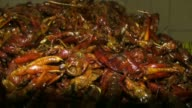 Indonesian people catch and fry grasshoppers until they become crunchy in Gunung Kidul regency of Yogyakarta region in Indonesia on December 04 2014...
