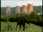 Industrial plant cooling towers in background black horse in field in foreground; horse turns and walks out of shot.