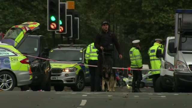 11 injured after car hits pedestrians near Natural History Museum ENGLAND London South Kensington EXT Police vehicles and officers at scene of...