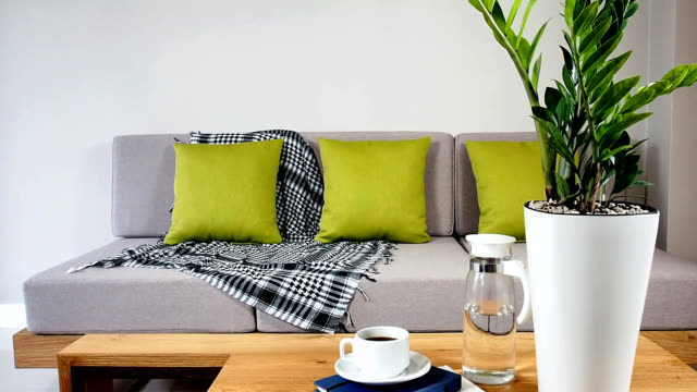 Interior design of couch in Living room
