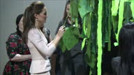 interior shots Duchess of Cambridge signing message tree