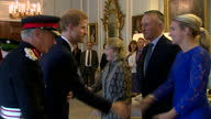 Interior shots of Prince Harry greeting officials and guests at a reception at Hillsborough Castle with Secretary of State for Northern Ireland James...