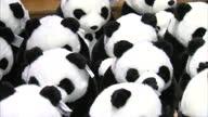 Interior shots of toy pandas for sale at the souvenir shop at Edinburgh Zoo Toy Pandas at Edinburgh Zoo Souvenir shop at Edinburgh Zoo on September...